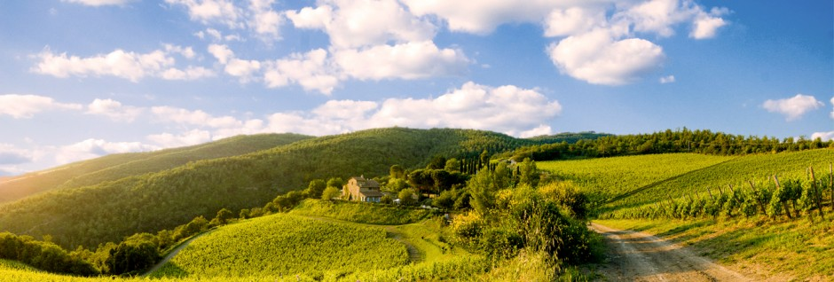 Montemaggio-view